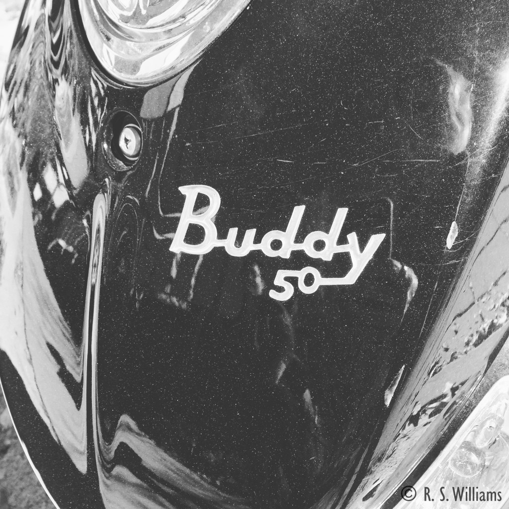 Buddy50WithReflections_COPY_2015-11-08_14.22.54 HDR